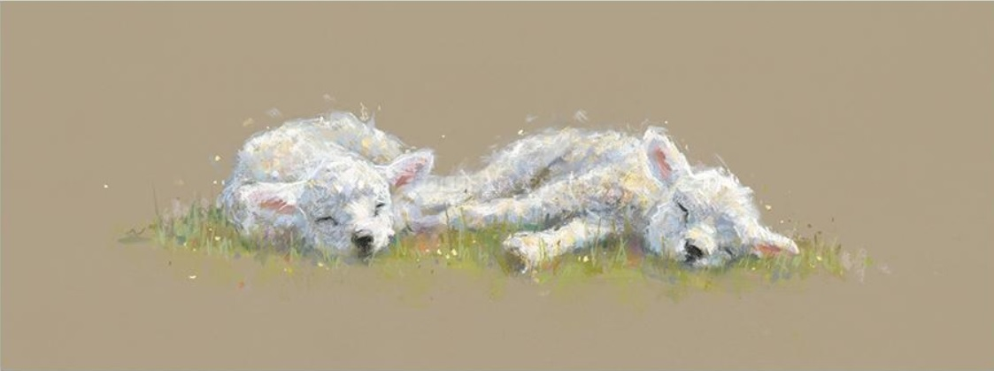 Springtime Slumber by Nicky Litchfield