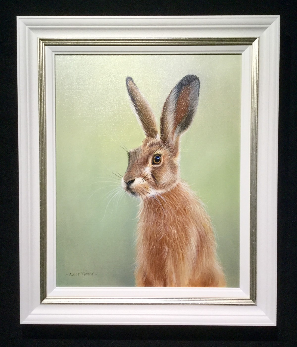 Inquisitive Hare by Alex McGarry