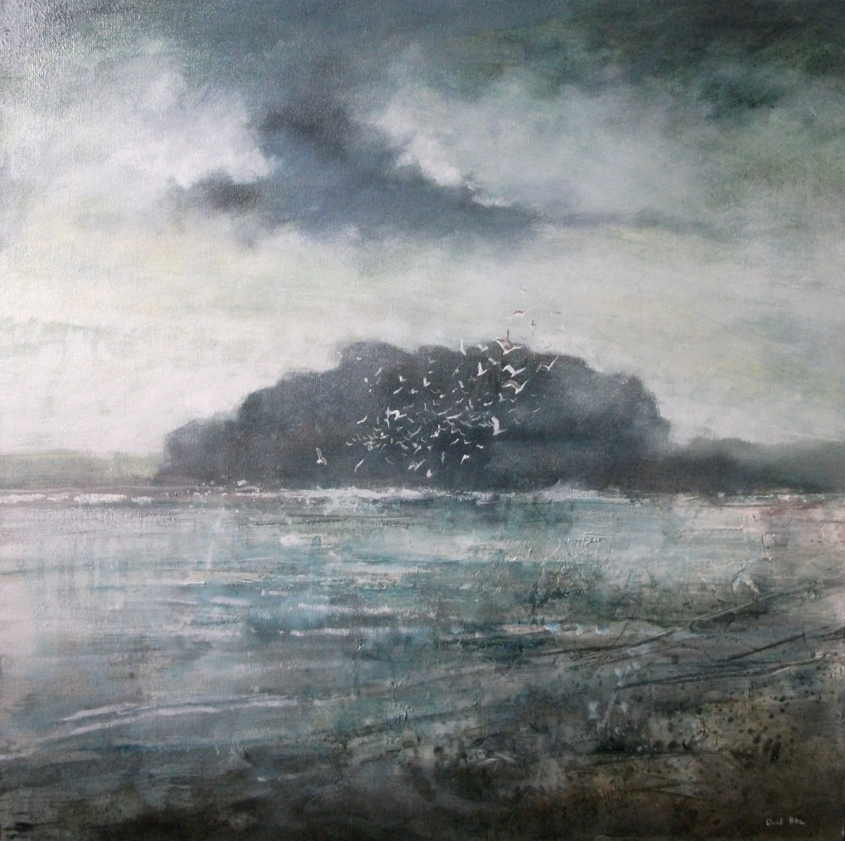 Seabirds by David Bez